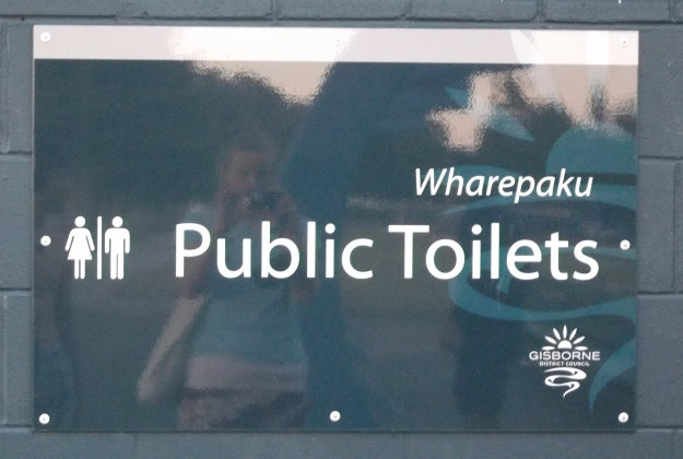 Road safety campaign in New Zealand's public toilets.