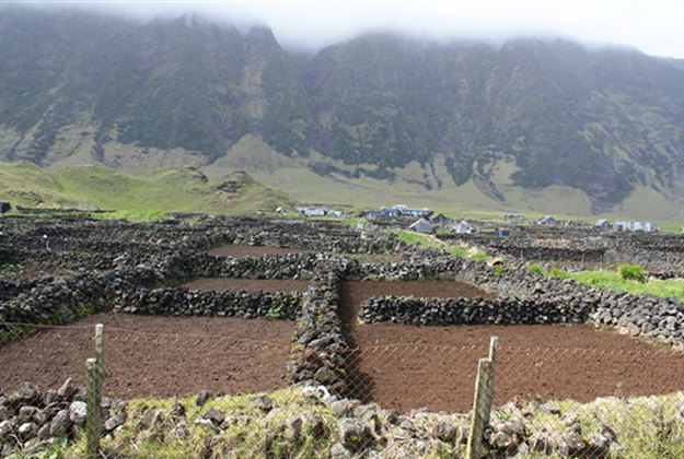 Enclosures on Tristan da Cunha. Image by: NFU/PA Wire.