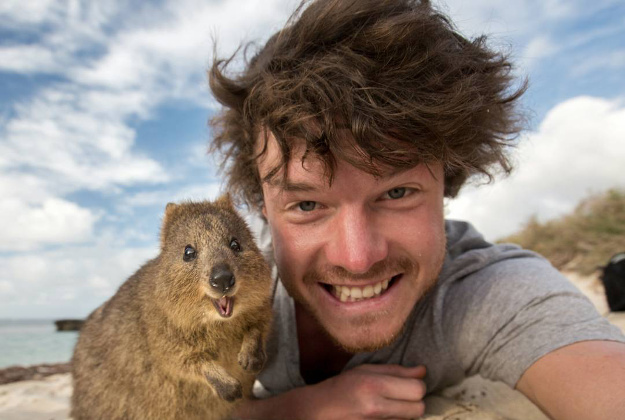 """The face of this quokka after I told him how awesome you are. Keep being awesome!"""