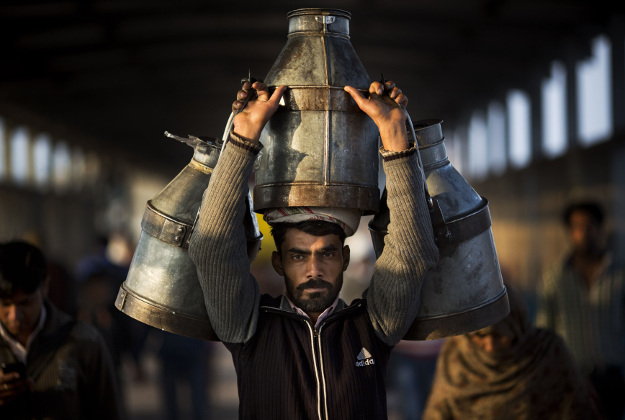 Indian milkman carries milk canisters early morning in Ghaziabad train station, on the outskirts of New Delhi, India, Wednesday, Feb. 24, 2016. India is the world's largest producer of milk and also the largest consumer.