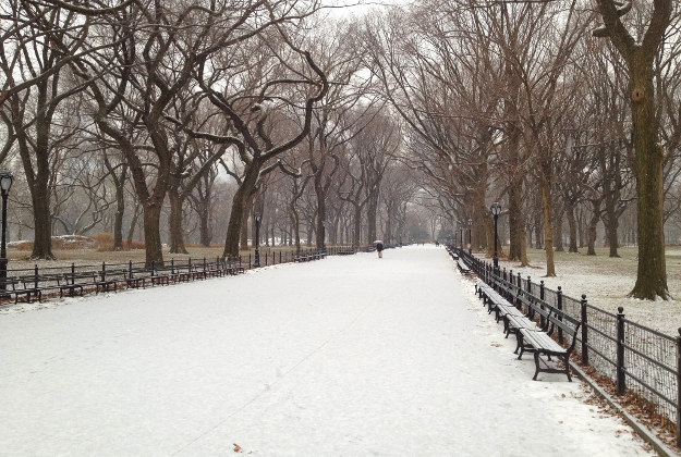 Central Park with snow.
