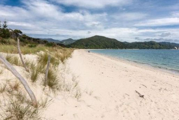 New Zealand island Awaroa is remote and has its own landing strip.