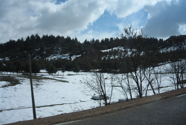 Snow in Ifrane, Morocco.