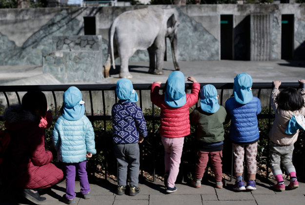 Children look at Hanako the elephant at Inokashira Park Zoo on the outskirts of Tokyo