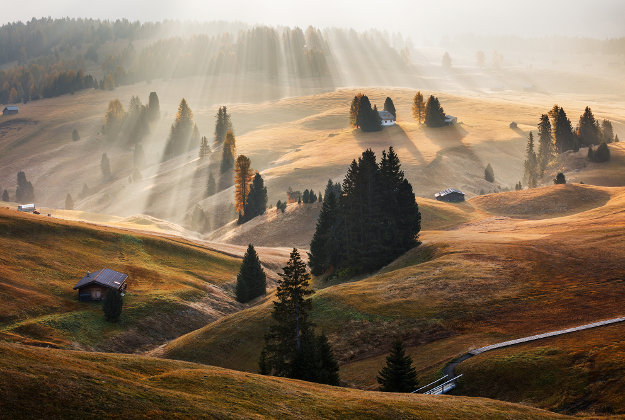Foggy October morning on Alpe di Siuisi in the Italian Dolomites.