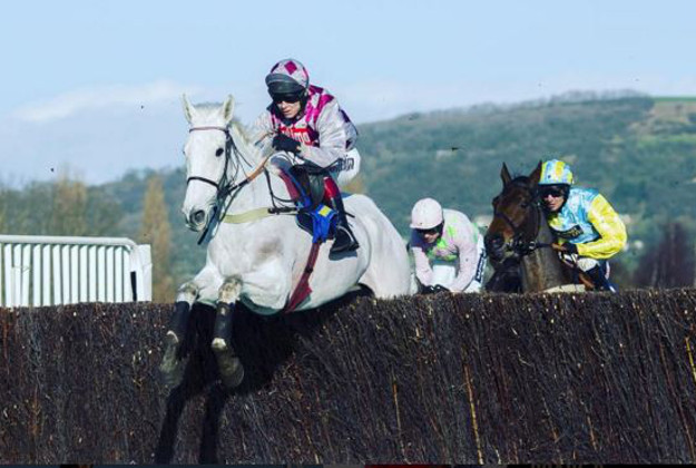SMAD PLACE ridden by Richard Johnson at last year's Cheltenham Races