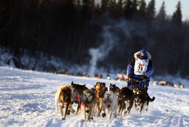 A lack of snow has shorted the ceremonial start of the Iditarod.