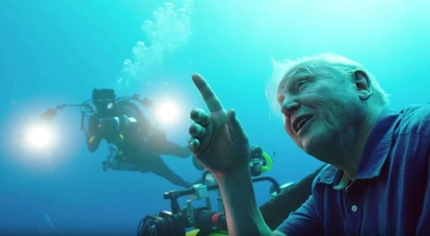 David Attenborough during his dive in the Great Barrier Reef