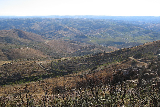 The 'rewilding' in the Côa Valley of Portugal gives eco-tourism a new way to grow