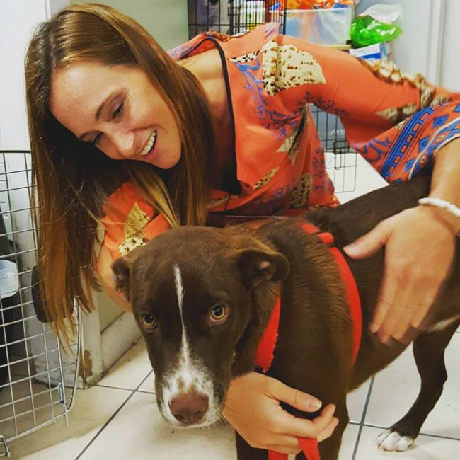 Volunteer Melissa taking potcake dog Kirby home to Canada. Image: Potcake Place K-9 Rescue