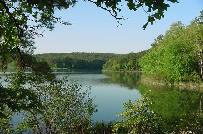 Cedar Lake in Ouachita National Forest. Image: USDA