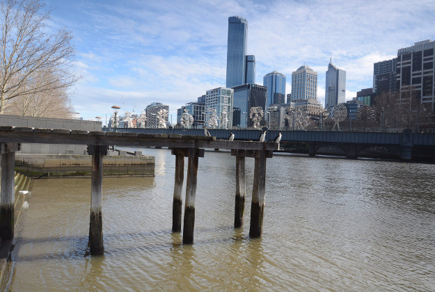 The Yarra River could host a new swimming pool by having a floating pontoon