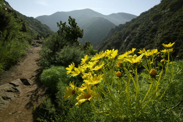 Backbone trail spans from Los Angeles to Ventura.