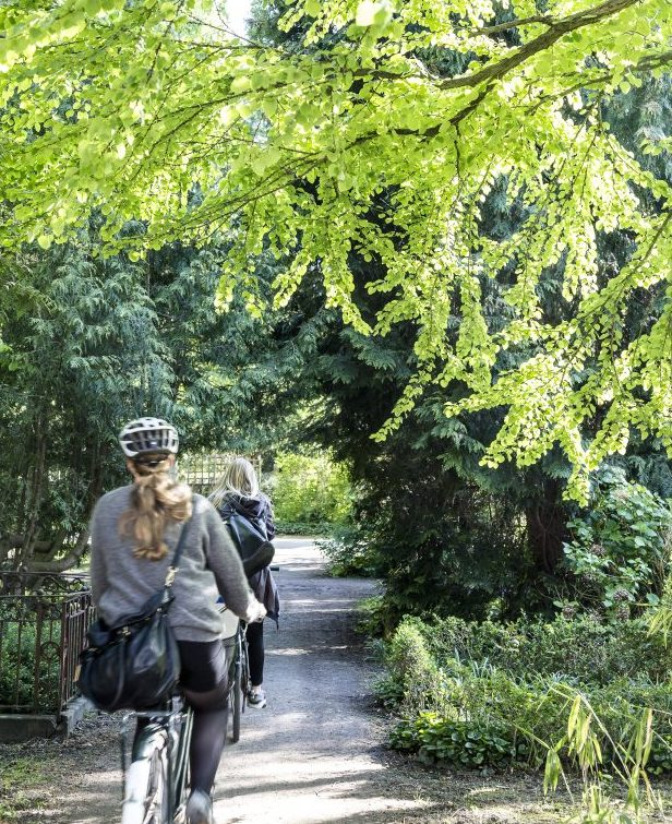 Cyclists riding through Assistens Kirkegaard.