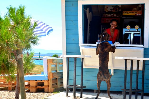 Monty's is Croatia's first dog-friendly beach and bar