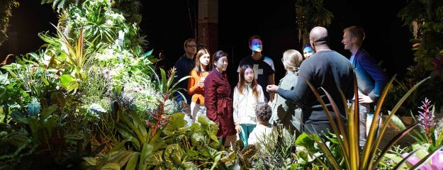 You can visit the Lowline Lab to get a glimpse into how the underground park could work.