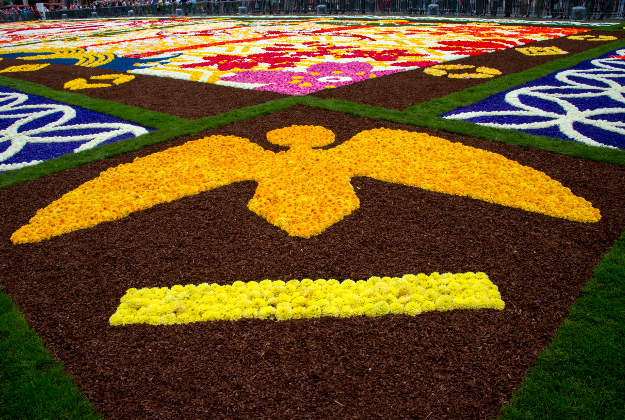 Peace logo on the Flower Carpet, Grand Place, Brussels.