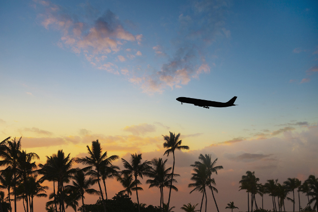Silhouette of airplane flying over palm trees in sunset.