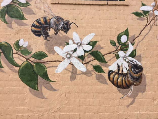 The Good Of The Hive Murals Honey Bees