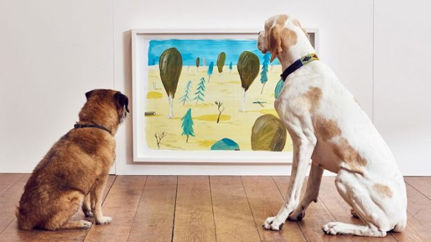 These paintings were specially created in colours dogs could see.