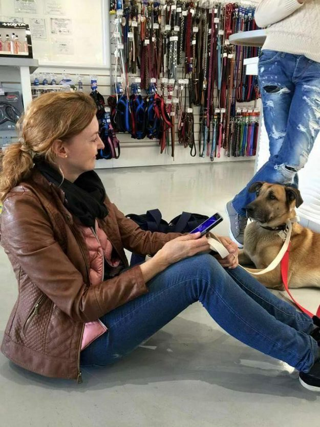 Olivia Sievers adopted Rubio and brought him home to Germany. Image: Mascotas Puerto Madero Adopciones Responsables