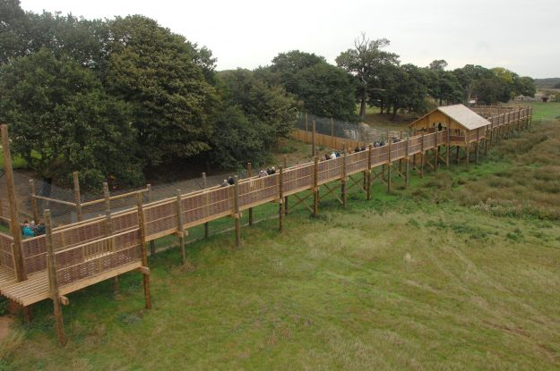 The Yorkshire Wildlife Park features expansive areas for the animals.
