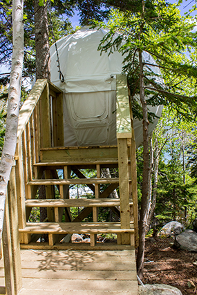 Cocoon Tree Bed in Cape Breton Highlands National Park.