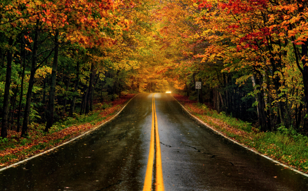 A Fall Foliage Map Will Help Leafpeepers Across The USA - Fall foliage map us 2016