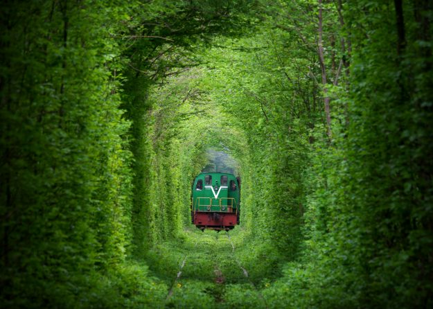 The unique Tunnel of Love in Ukraine has become a popular destination for tourists in recent years due to its natural beauty