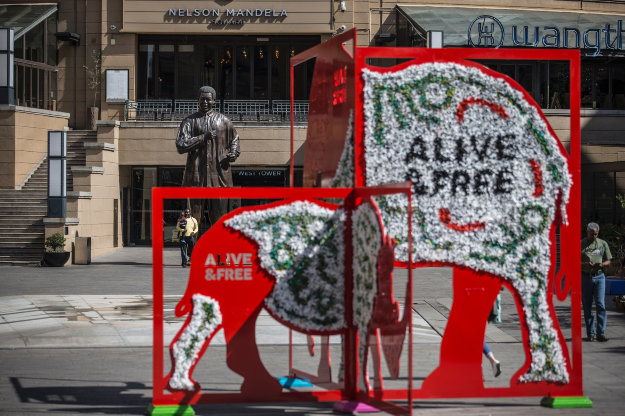 An installation showing a rhino and an elephant is seen in Mandela Square as part of the CITES convention in Johannesburg