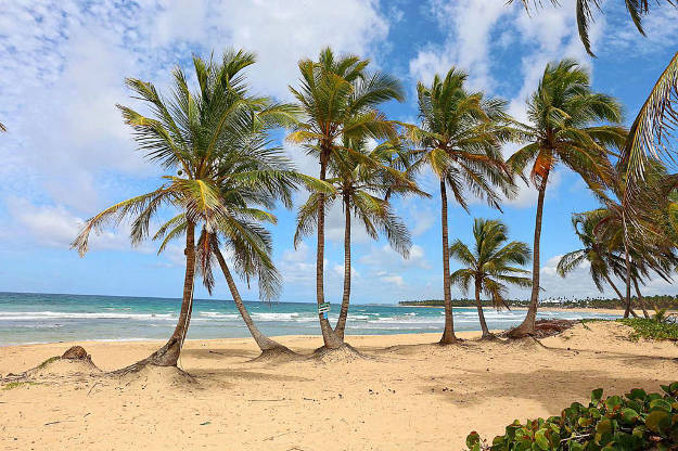 The golden sandy beaches of the Dominican Republic.