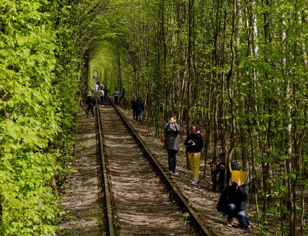 Tourists takes photos of the picturesque track and trees.