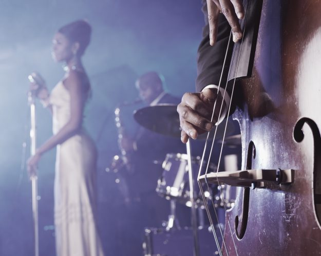 Close-up of a Man Plucking a Double Bass on Stage in a Nightclub and a