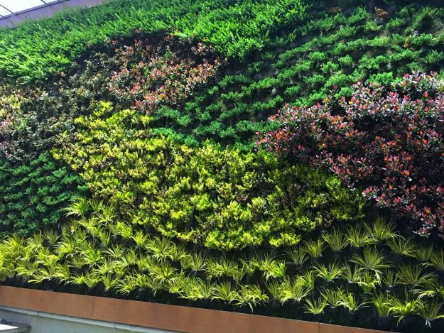 A new 39 living wall 39 at heathrow might help ease passenger for The living room channel 10 vertical garden
