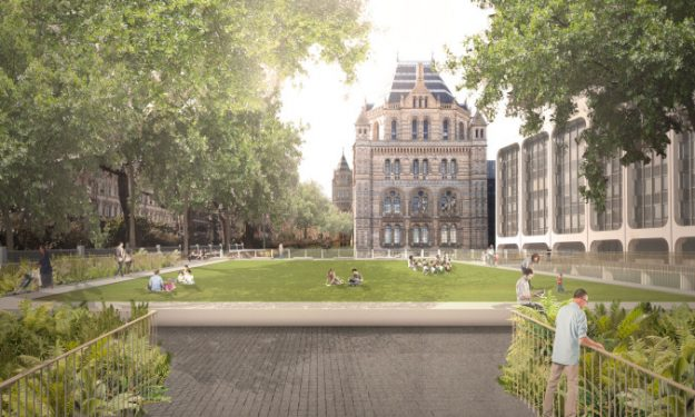 A rendering of the new grounds at London's Natural History Museum. Image: Niall McLaughlin Architects