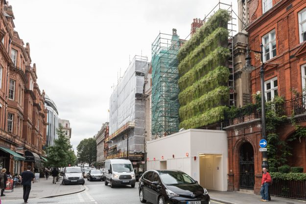 "The ""Living Wall Lite"" is a strawberry, grass and flower-covered wall' attached to the scaffolding on a former church in London. Image: Arup"