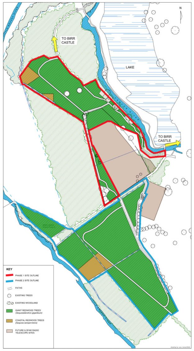 A planting plan for Giants Grove in Offaly, Ireland.