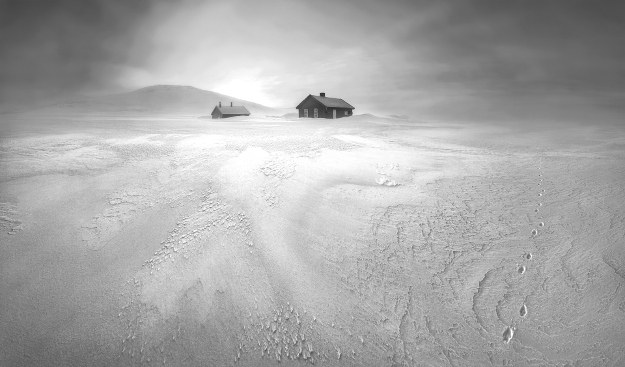 "Hardangervidda National Park, Norway. ""After days of frigid snowstorms, a break in the weather revealed an otherworldly landscape near these hunters' cabins. The little footprints were left behind by a lone arctic fox during its relentless search for food in this barren wilderness. After scouting this frozen scene before sunrise, I discovered a spot with a snowdrift leading into the light. The placement of the hill to the left and the tracks made for a balanced image. The image is captured in a wide panoramic format to convey the vastness of the surroundings. I captured the image just before the sun broke the horizon, making for a softly lit scene that helps the textures come alive""."