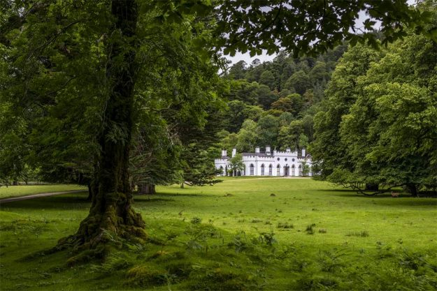 The Guinness family's Irish castle is on the market for $30 million. Image: Sotheby's