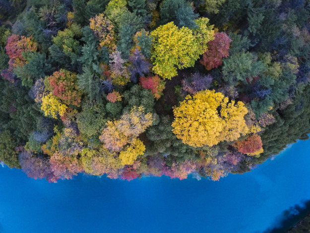 Autumnal hues enliven the turquoise tinged waters of a rare, glacially carved, meromictic lake.