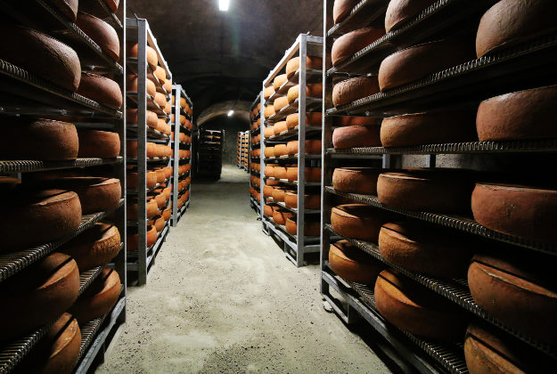 Cheese maturing in cave.
