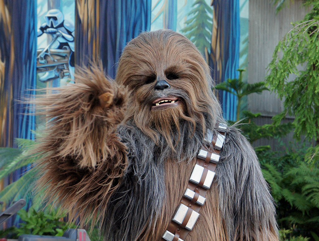 """Chewbacca the Wookiee from """"Star Wars"""" at the re-opening of """"Star Tours"""" at Walt Disney World in Orlando, Florida,"""
