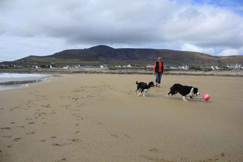 Dooagh beach on Achill Island was washed away 33 years ago but has now suddenly reappeared. Image: Achill Island Tourism