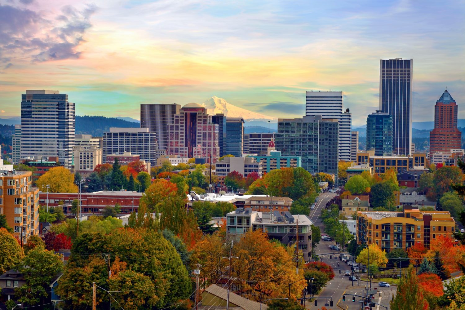 Portland, Oregon, bids to build a craft cannabis business to rival beer. Image: David Gn