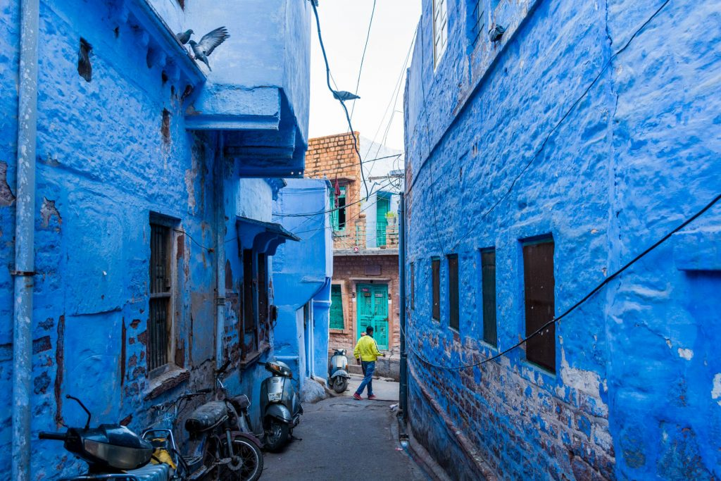 Meander through Jodhpur's blue lanes to appreciate the vibrant city.