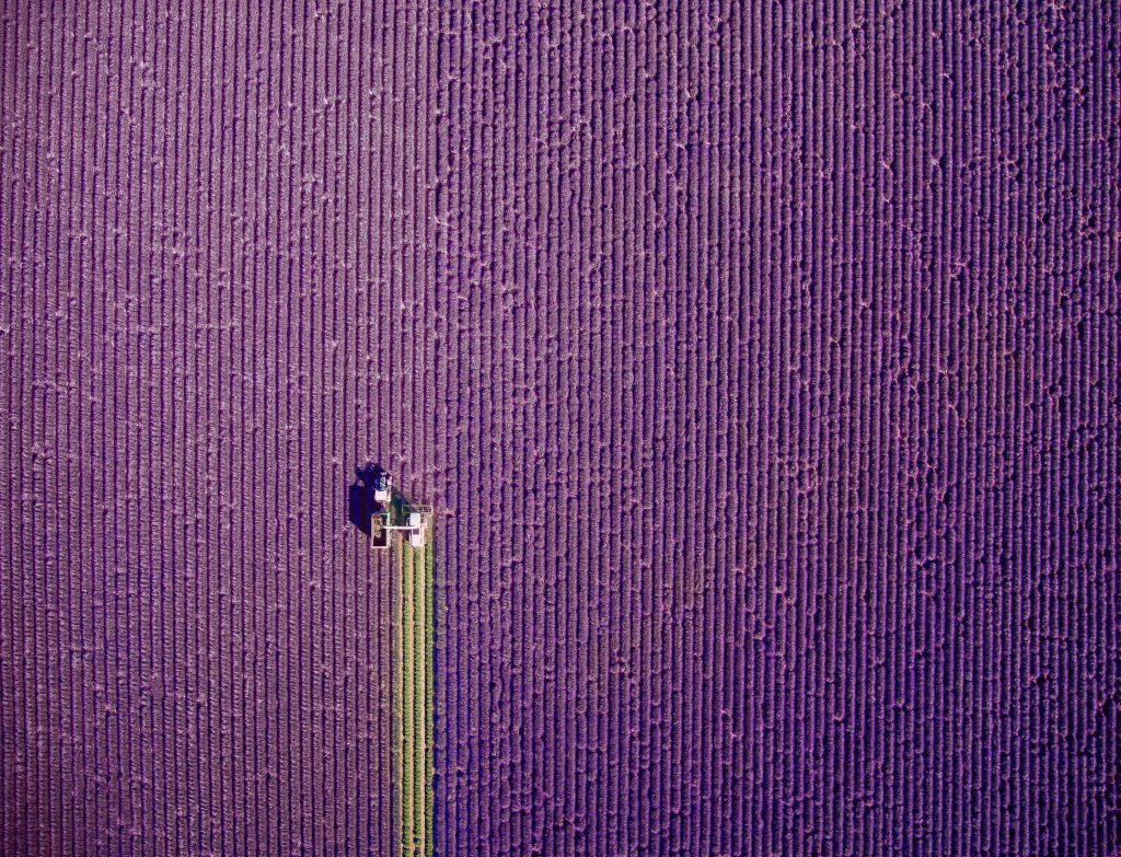 The 1st prize winner in the nature category shows machinery working in the fields in Provence, France.