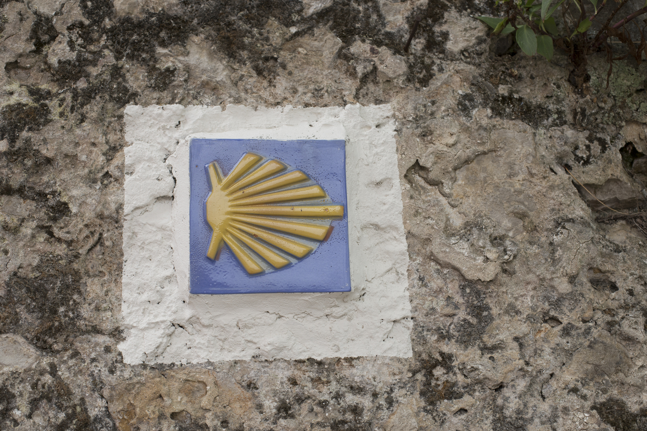 A shell sign pointing the way on the Santiago de Compostela. Image: Paula Sierra