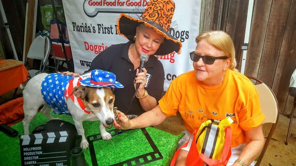 The Canine Film Festival will be held in Miami. Image: Canine Film Festival