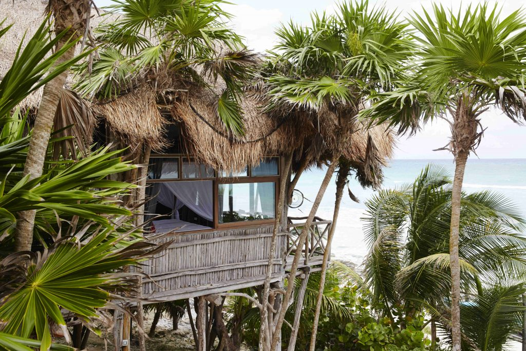 Escape to a treehouse hotel in Mexico.