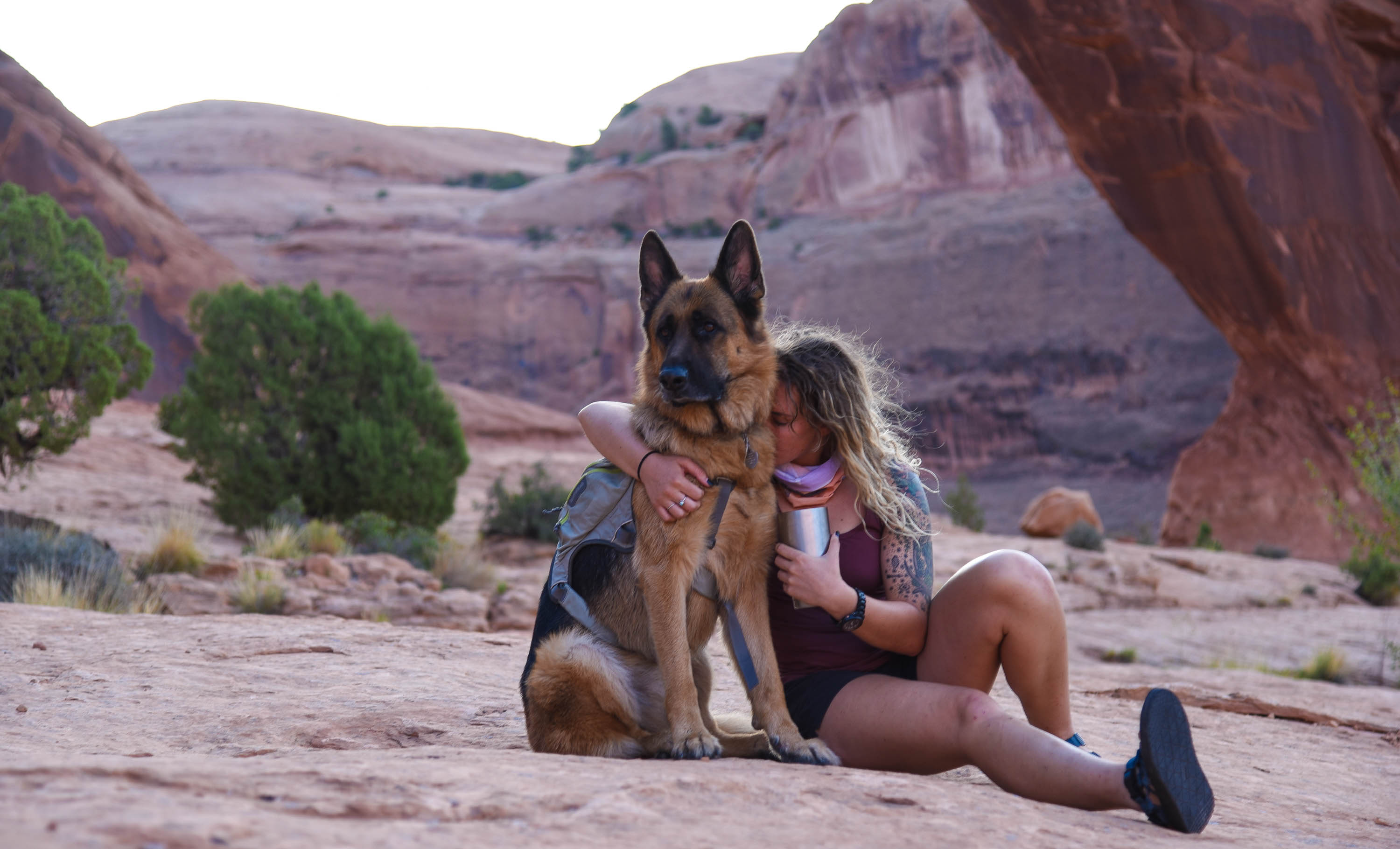 Meet Bear the German Shepherd who loves hiking AND hugging